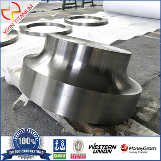 AMS4928 GR5(Ti-6Al-4V) Titanium Forging Machined As Per Client Drawing